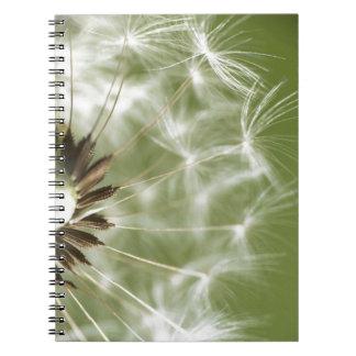 Dandelion Head Notebook