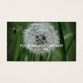 Dandelion in the Grass Business Card