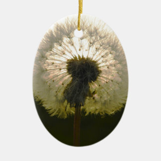 dandelion in the sun christmas ornament