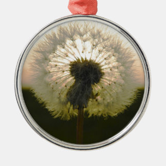 dandelion in the sun Silver-Colored round decoration