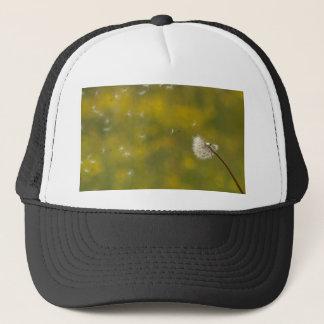 Dandelion in the wind cap