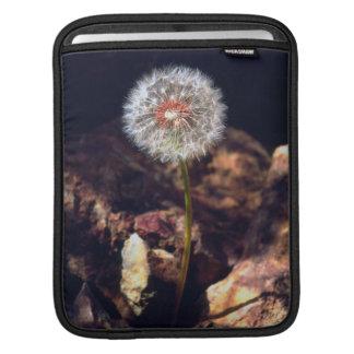Dandelion iPad Sleeve
