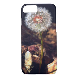 Dandelion iPhone 8/7 Case