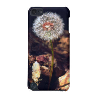Dandelion iPod Touch (5th Generation) Cases