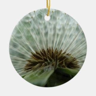 Dandelion Macro Round Ceramic Decoration
