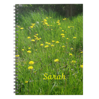 dandelion meadow notebooks