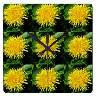 Dandelion Nature, Photo 002 Square Wall Clock
