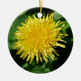 Dandelion Nature, Photo Christmas Ornament