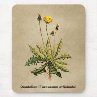 Dandelion On Old Paper Mouse Mat