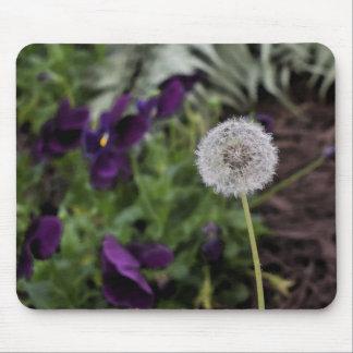 Dandelion & pansies mouse pad