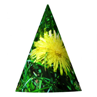 Dandelion Party Hat