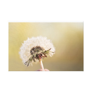 Dandelion photography canvas print