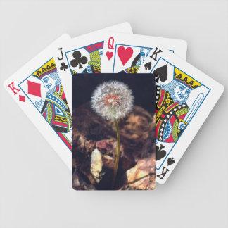 Dandelion Poker Deck