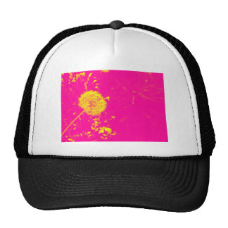 Dandelion pop art cap
