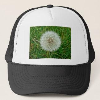 Dandelion Products Cap