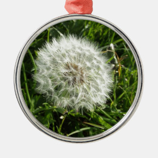 Dandelion Seed Design Silver-Colored Round Decoration