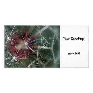 Dandelion Seed Head Photo Card Template