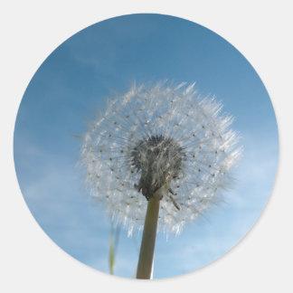 Dandelion Seed Head Stickers