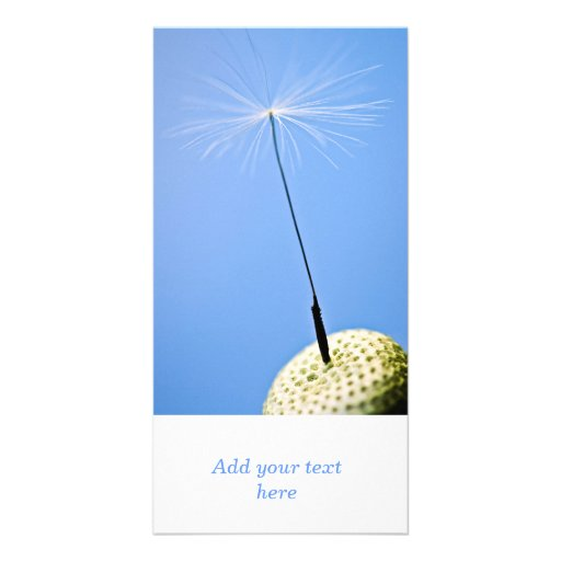 Dandelion Seed Photo Greeting Card