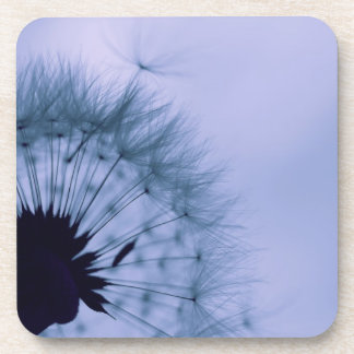 Dandelion Seeds Beverage Coasters