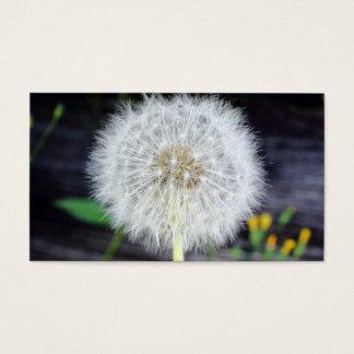 Dandelion Seeds Near Wood Planks. Business Card