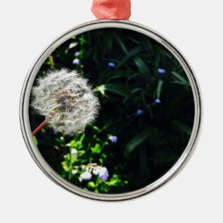 Dandelion Silver-Colored Round Decoration