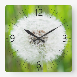 Dandelion Square Wall Clock