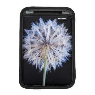 Dandelion (Taraxacum Officinale) Seed Head iPad Mini Sleeve