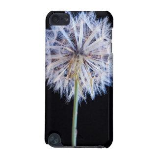 Dandelion (Taraxacum Officinale) Seed Head iPod Touch (5th Generation) Covers