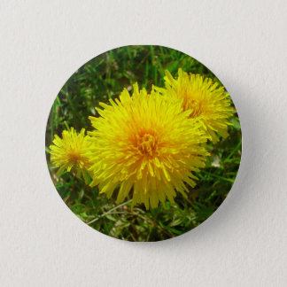 Dandelion Trio 6 Cm Round Badge
