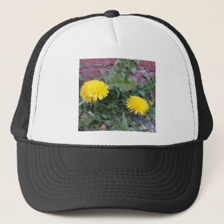 Dandelion Will Make You Wise Trucker Hat