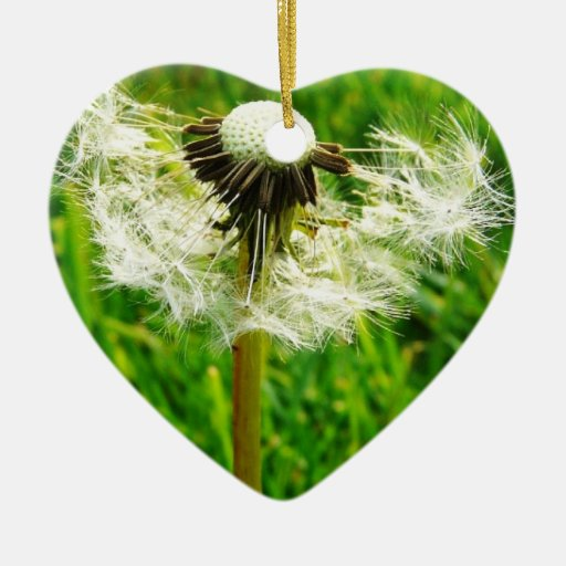 Dandelion Wishes - I wished for.... Ornaments
