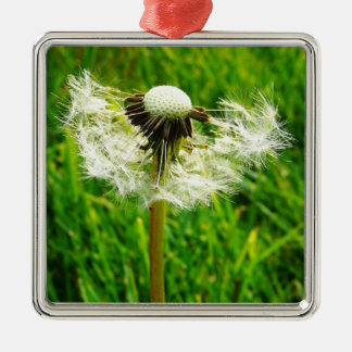 Dandelion Wishes - I wished for.... Silver-Colored Square Decoration