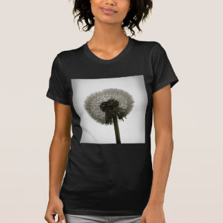 Dandelion Women's Shirt Black