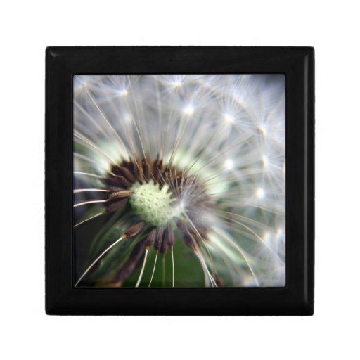 Dandelion wooden gift and jewelry box