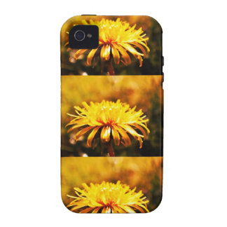 Dandelion Yellow Blossoms Flowers Vines Spring iPhone 4/4S Cases