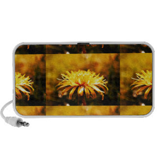 Dandelion Yellow Blossoms Flowers Vines Spring Speakers