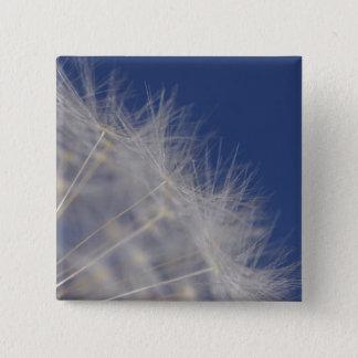 Dandelions 15 Cm Square Badge