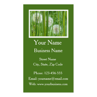 Dandelions and Green Grass Pack Of Standard Business Cards