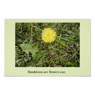 """Dandelions are flowers"" poster"
