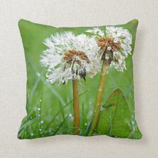 Dandelions by Alexandra Cook Cushions