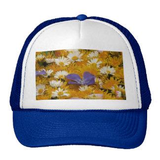 dandelions etc cap