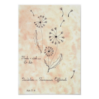 Dandelions (Kimberly Turnbull Art) Poster