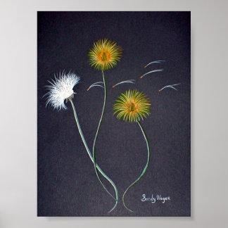 Dandelions Poster Print Large