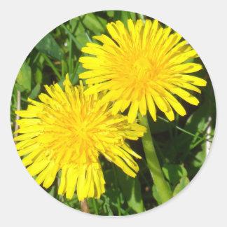 Dandelions Round Sticker