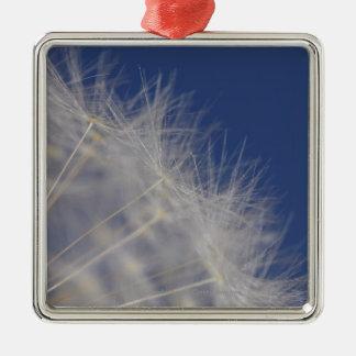 Dandelions Silver-Colored Square Decoration