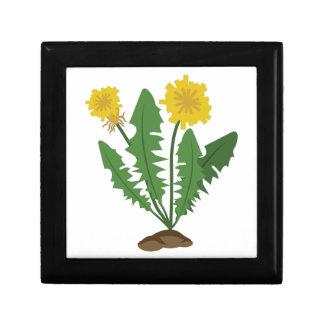 Dandelions Small Square Gift Box