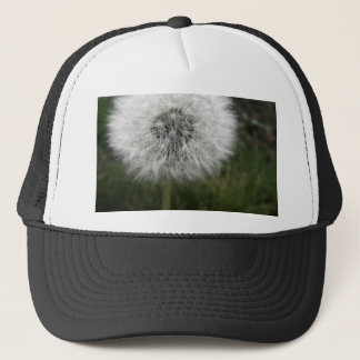 Dandie Trucker Hat