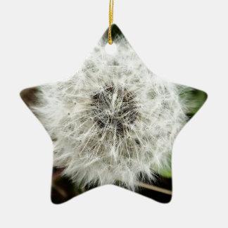 Dandy Christmas Ornament