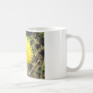 Dandy Dandelion Basic White Mug